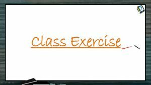 Vectors - Class Exercise (Session 10)