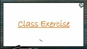 Wave Motion - Class Exercise (Session 3)