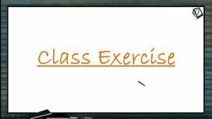 Wave Motion - Class Exercise (Session 4)