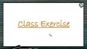 Wave Motion - Class Exercise (Session 8)