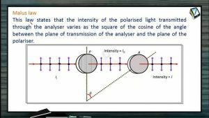 Wave Optics - Malus Law And Brewster's Law (Session 9)