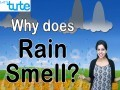 Class 9 Science - Why Does Rain Smell Video by Let's tute