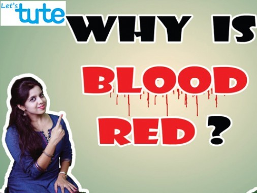 Class 9 Science - Why Is Blood Red Video by Let's tute