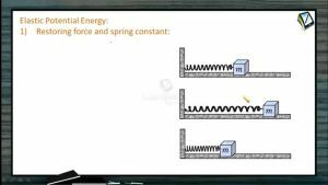 Work, Power And Energy - Elastic Potential Energy (Session 6)