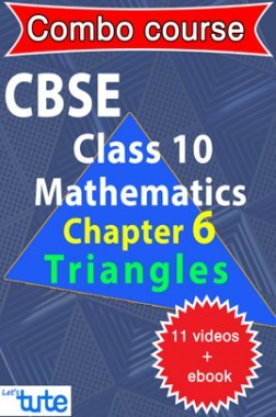 Combo : CBSE Class X Chapter 6 - Triangles (11 Videos + Complementary Smartbook As A Helping guide) by Let's Tute